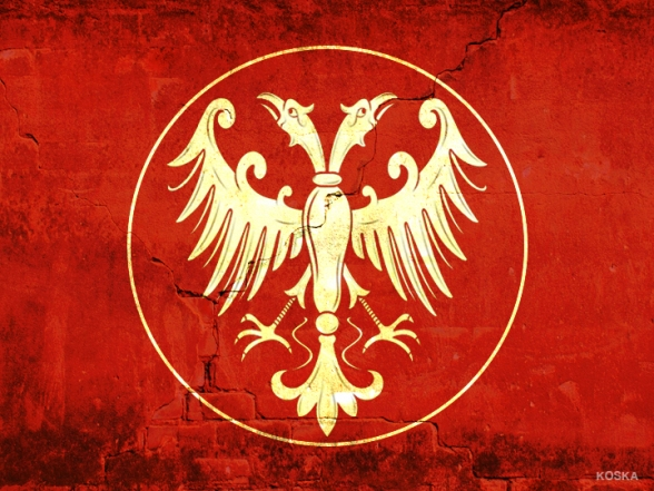 zastava-zid-nemanjicki orao-KOSKA2b